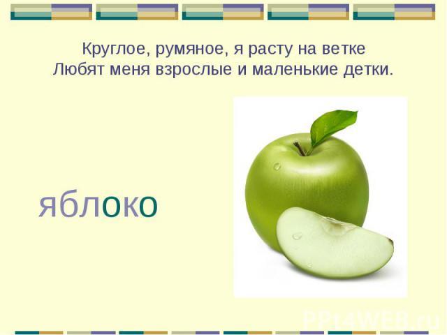Круглое, румяное, я расту на ветке Любят меня взрослые и маленькие детки. яблоко