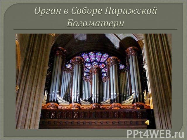 Орган в Соборе Парижской Богоматери