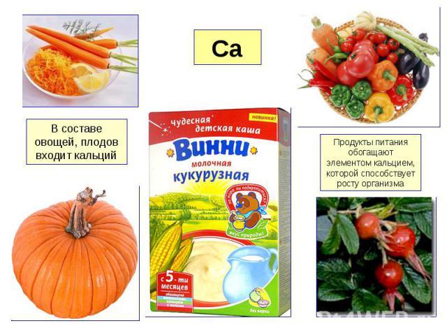 В составе овощей, плодов входит кальций Продукты питания обогащают элементом кальцием, которой способствует росту организма