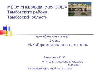 МБОУ «Новолядинская СОШ» Тамбовского района Тамбовской области Урок обучения чте