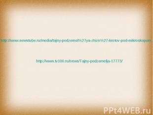 http://www.newstube.ru/media/tajny-podzemel%27ya-zhizn%27-krotov-pod-mikroskopom