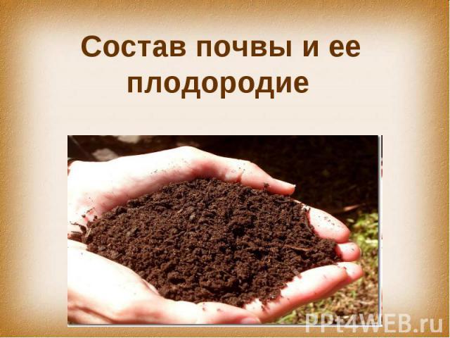 Состав почвы и ее плодородие