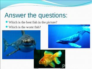 Answer the questions: Which is the best fish in the picture? Which is the worst