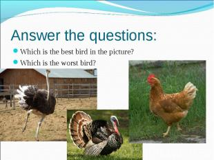 Answer the questions: Which is the best bird in the picture? Which is the worst