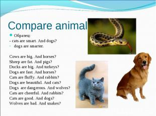 Compare animals Образец: - cats are smart. And dogs? dogs are smarter. Cows are