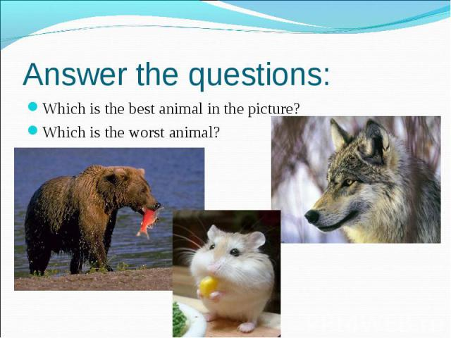 Answer the questions: Which is the best animal in the picture? Which is the worst animal?