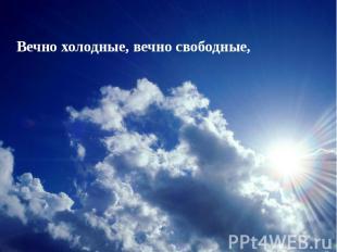 Вечно холодные, вечно свободные,