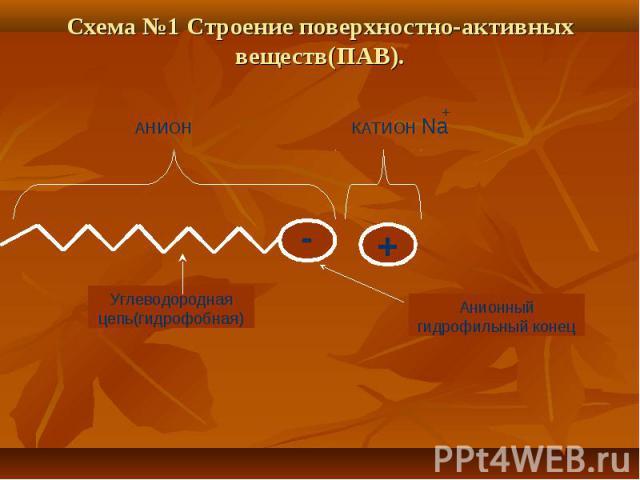 Схема №1 Строение поверхностно-активных веществ(ПАВ). Углеводородная цепь(гидрофобная) Анионный гидрофильный конец