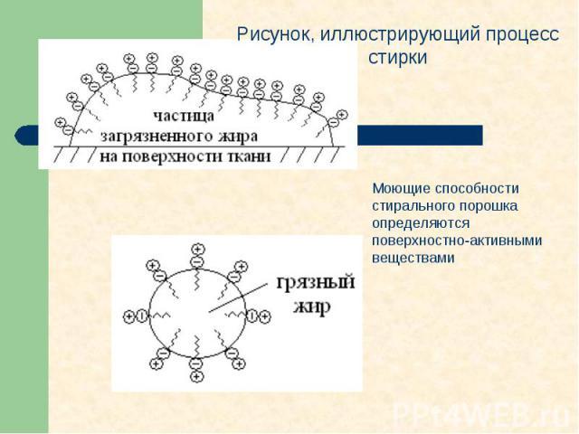 Рисунок, иллюстрирующий процесс стирки Моющие способности стирального порошка определяются поверхностно-активными веществами