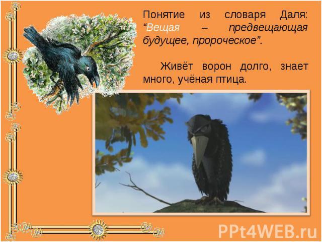 """Понятие из словаря Даля: """"Вещая – предвещающая будущее, пророческое"""". Живёт ворон долго, знает много, учёная птица."""