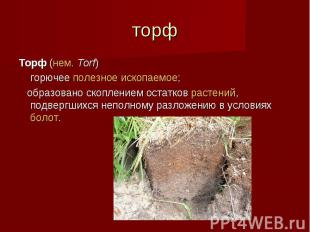 торф Торф (нем.Torf) горючее полезное ископаемое; образовано скоплением остатк