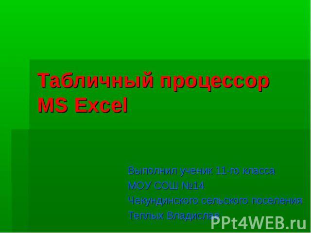 Табличный процессор MS Excel Выполнил ученик 11-го класса МОУ СОШ №14 Чекундинского сельского поселения Теплых Владислав
