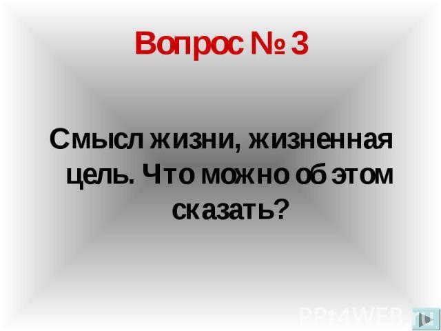 Вопрос № 3 Смысл жизни, жизненная цель. Что можно об этом сказать?