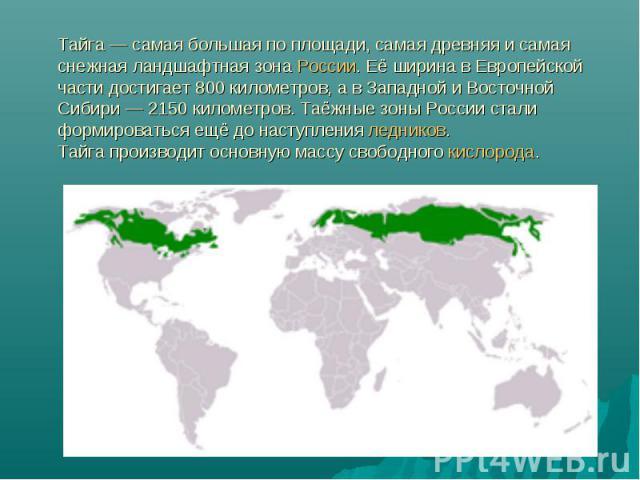 Тайга— самая большая по площади, самая древняя и самая снежная ландшафтная зона России. Её ширина в Европейской части достигает 800 километров, а в Западной и Восточной Сибири— 2150 километров. Таёжные зоны России стали формироваться ещё до наступ…
