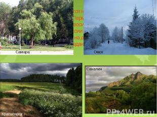 Зона тайги располагается на западе ( города Самара, Брянск, Уфа, Пермь и другие