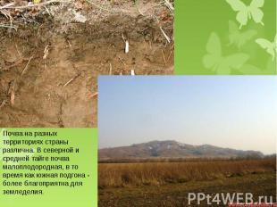 Почва на разных территориях страны различна. В северной и средней тайге почва ма