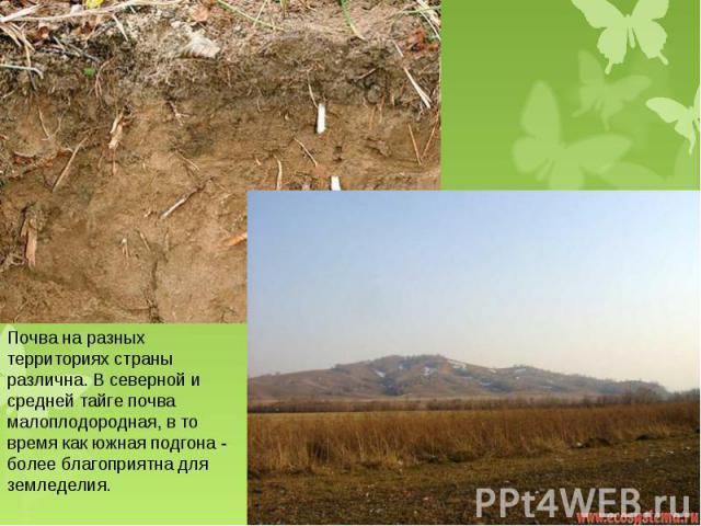 Почва на разных территориях страны различна. В северной и средней тайге почва малоплодородная, в то время как южная подгона - более благоприятна для земледелия.
