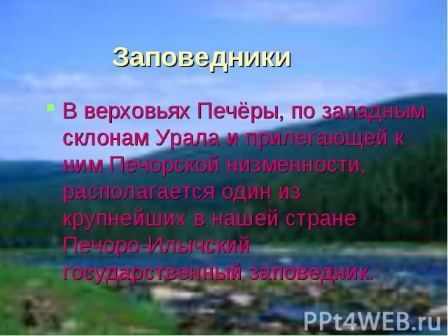 Заповедники В верховьях Печёры, по западным склонам Урала и прилегающей к ним Печорской низменности, располагается один из крупнейших в нашей стране Печоро-Илычский государственный заповедник.