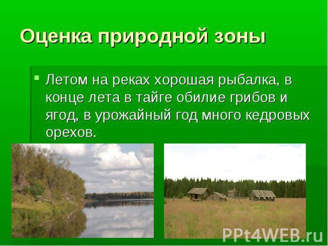 Оценка природной зоны Летом на реках хорошая рыбалка, в конце лета в тайге обилие грибов и ягод, в урожайный год много кедровых орехов.