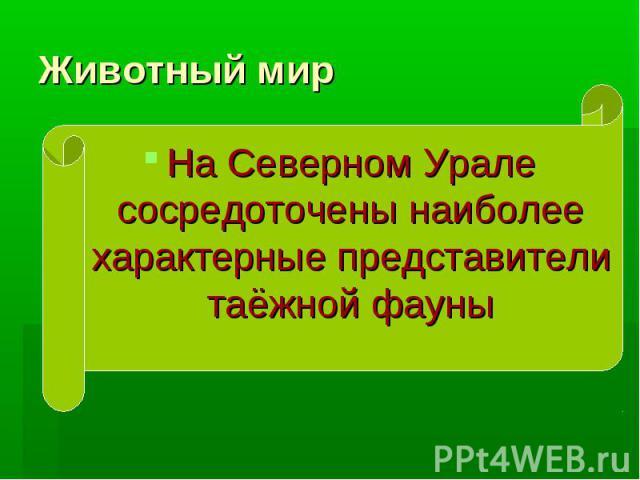 Животный мир На Северном Урале сосредоточены наиболее характерные представители таёжной фауны