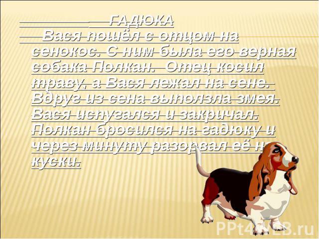 ГАДЮКА Вася пошёл с отцом на сенокос. С ним была его верная собака Полкан. Отец косил траву, а Вася лежал на сене. Вдруг из сена выползла змея. Вася испугался и закричал. Полкан бросился на гадюку и через минуту разорвал её на куски.