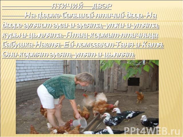 ПТИЧИЙ ДВОР На ферме большой птичий двор. На дворе гуляют гуси и гусята, утки и утята, куры и цыплята. Птиц кормит птичница бабушка Настя. Ей помогают Таня и Катя. Они кормят гусят, утят и цыплят.