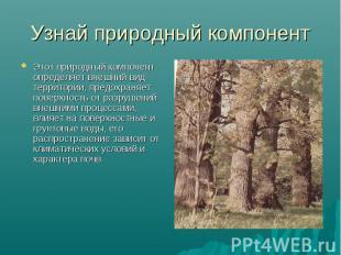 Узнай природный компонент Этот природный компонент определяет внешний вид террит