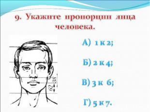 9. Укажите пропорции лица человека. А) 1 к 2; Б) 2 к 4; В) 3 к 6; Г) 5 к 7.
