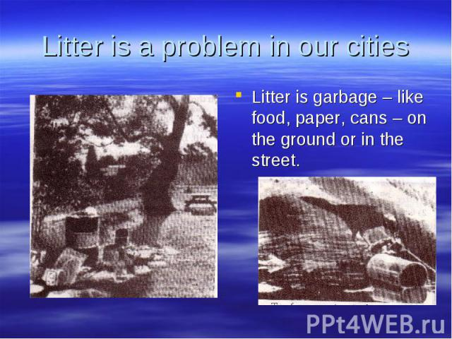 Litter is a problem in our cities Litter is garbage – like food, paper, cans – on the ground or in the street.