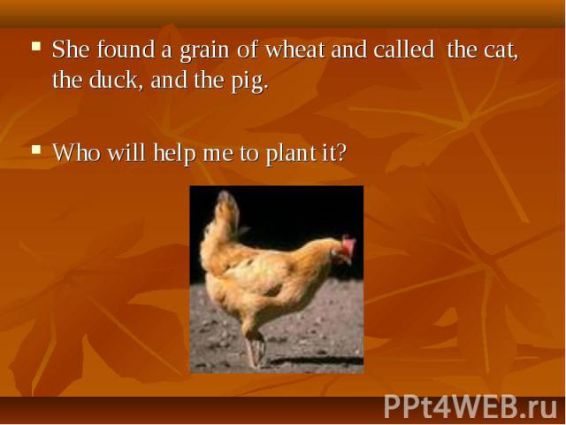 She found a grain of wheat and called the cat, the duck, and the pig. Who will help me to plant it?