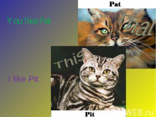 You like Pat I like Pit