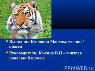 Выполнил Козлович Максим, ученик 1 класса Руководитель: Кожина В.Н – учитель нач