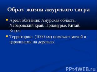 Образ жизни амурского тигра Ареал обитания: Амурская область, Хабаровский край,