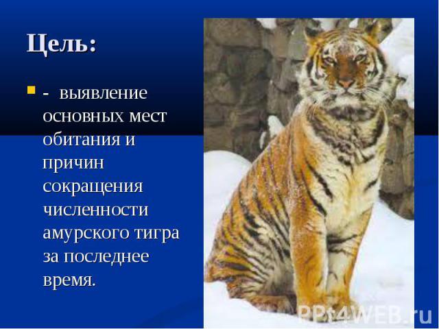 Цель: - выявление основных мест обитания и причин сокращения численности амурского тигра за последнее время.