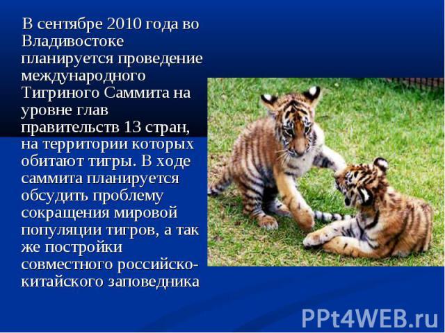 В сентябре 2010года во Владивостоке планируется проведение международного Тигриного Саммита на уровне глав правительств 13 стран, на территории которых обитают тигры. В ходе саммита планируется обсудить проблему сокращения мировой популяции тигров,…
