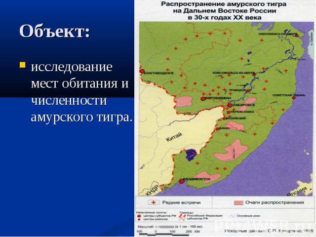 Объект: исследование мест обитания и численности амурского тигра.