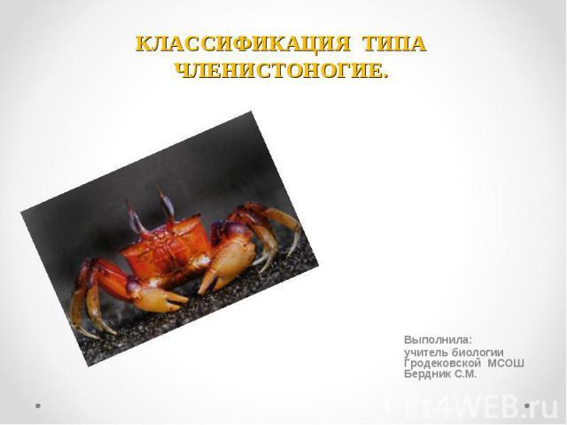 Классификация типа членистоногие Выполнила: учитель биологии Гродековской МСОШ Бердник С.М.