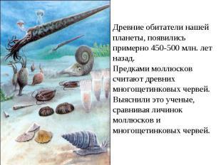 Древние обитатели нашей планеты, появились примерно 450-500 млн. лет назад. Пред