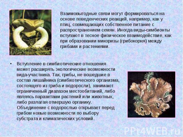 Взаимовыгодные связи могут формироваться на основе поведенческих реакций, например, как у птиц, совмещающих собственное питание с распространением семян. Иногда виды-симбионты вступают в тесное физическое взаимодействие, как при образовании микоризы…