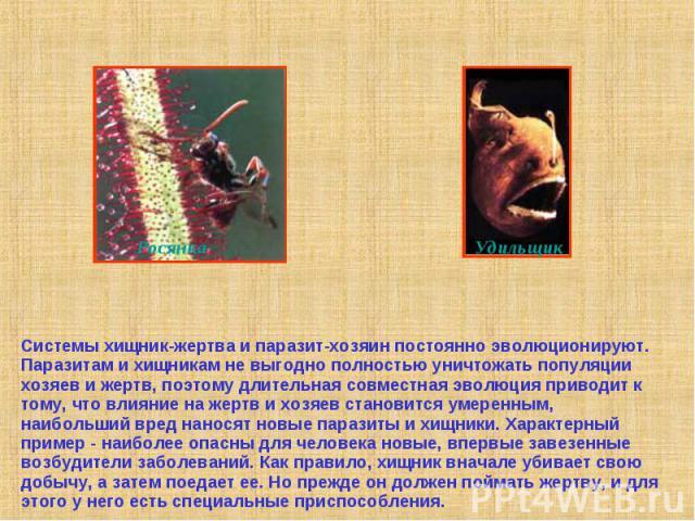 Системы хищник-жертва и паразит-хозяин постоянно эволюционируют. Паразитам и хищникам не выгодно полностью уничтожать популяции хозяев и жертв, поэтому длительная совместная эволюция приводит к тому, что влияние на жертв и хозяев становится умеренны…