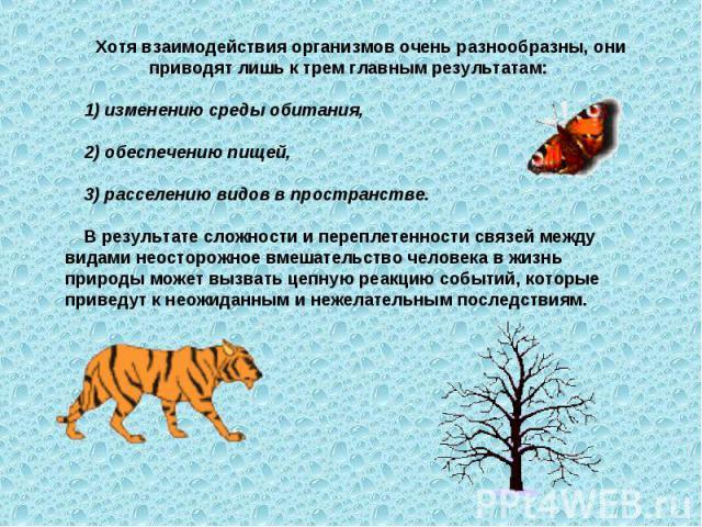 Хотя взаимодействия организмов очень разнообразны, они приводят лишь к трем главным результатам: изменению среды обитания, 2) обеспечению пищей, 3) расселению видов в пространстве. В результате сложности и переплетенности связей между видами неостор…