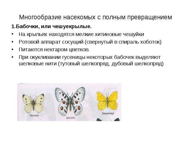Многообразие насекомых с полным превращением 1.Бабочки, или чешуекрылые. На крыльях находятся мелкие хитиновые чешуйки Ротовой аппарат сосущий (свернутый в спираль хоботок) Питаются нектаром цветков. При окукливании гусеницы некоторых бабочек выделя…