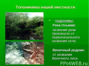 Топонимика нашей местности - гидронимы: Река Осьмая: название реки произошло от