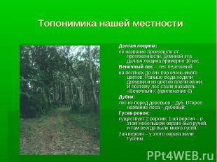 Топонимика нашей местности Долгая лощина: её название произошло от протяженности