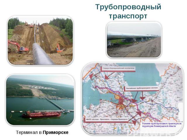 Трубопроводный транспорт Терминал в Приморске