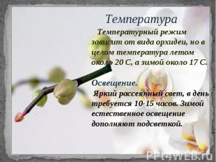Температура Температурный режим зависит от вида орхидеи, но в целом температура