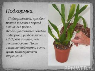 Подкормка. Подкармливать орхидеи можно только в период активного роста. Использу