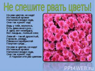 Не спешите рвать цветы! Не рви цветов, не надо! Их нежный аромат Наполнил воздух