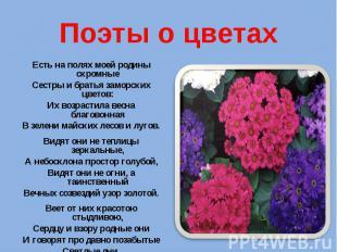 Поэты о цветах Есть на полях моей родины скромные Сестры и братья заморских цвет