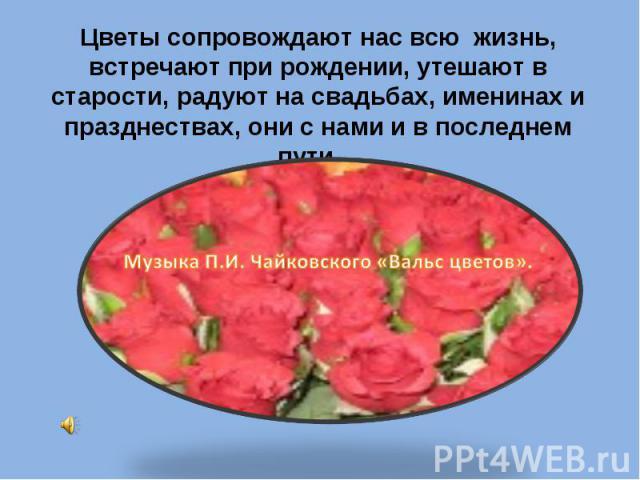 Цветы сопровождают нас всю жизнь, встречают при рождении, утешают в старости, радуют на свадьбах, именинах и празднествах, они с нами и в последнем пути… Музыка П.И. Чайковского «Вальс цветов».